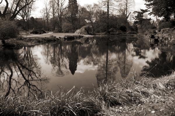 Pond in Flora Cologne/Teich in Flora Köln. Tommy Schmucker 2013-04-01. [CC BY-SA 3.0]